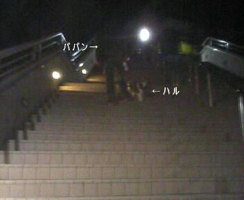 2007-03-15_01-50.jpg
