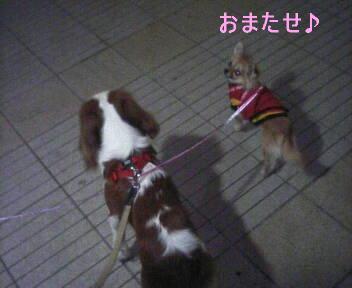 2007-03-15_01-57.jpg