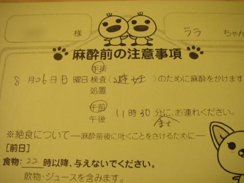 P8021686.jpg