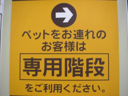 P5160645.jpg